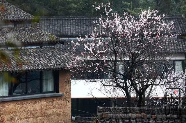 夯土墙中国
