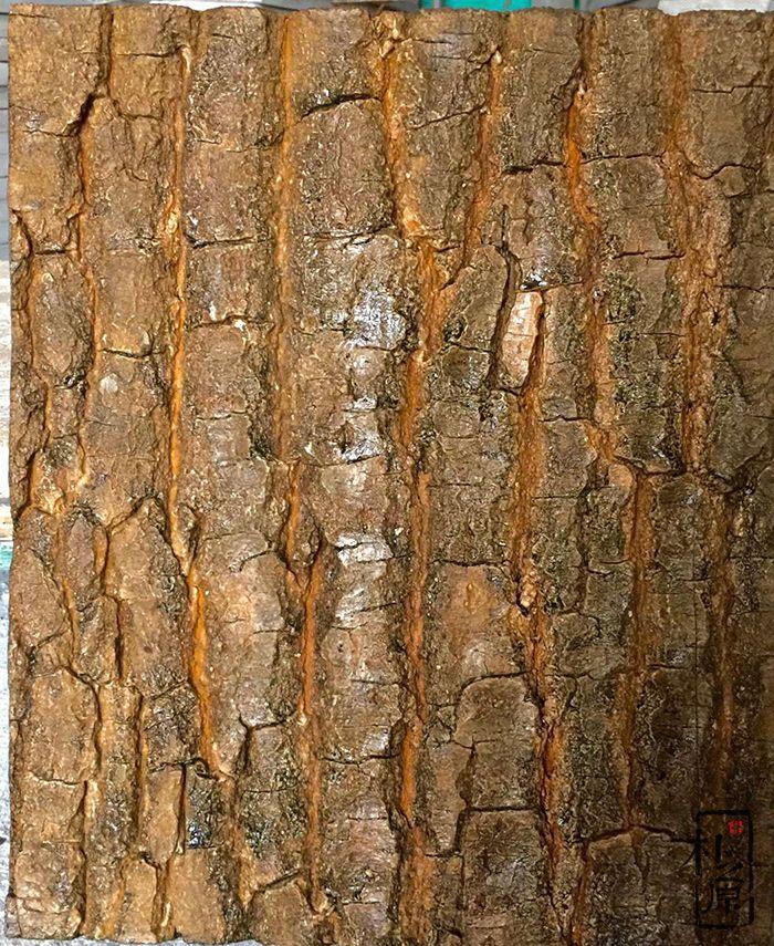 朴之原混凝土仿木系列15