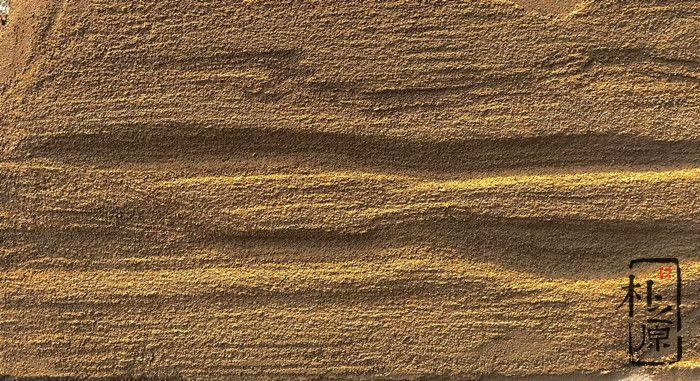 朴之原地质砂岩墙