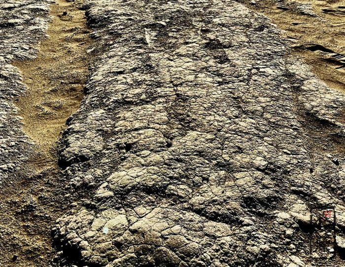 朴之原夯土墙 | 泥土赞
