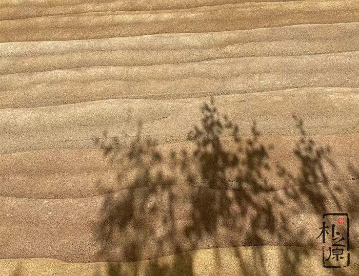 夯土墙 | 肌理世界,自然境界